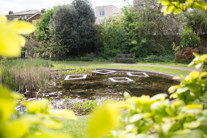 Royal Trinity Hospice garden pond