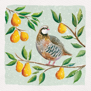 Partridge Christmas Charity Greeting Cards Pack Of 10 Royal Trinity Hospice