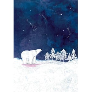 Polar Bear Christmas Charity Cards 10 Pack £3.99