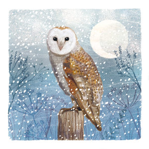Owl Christmas Charity Cards 10 Pack £3.99